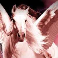 [Resenha] Pegasus e a Batalha Pelo Olimpo - Olimpo em Guerra Vol 2